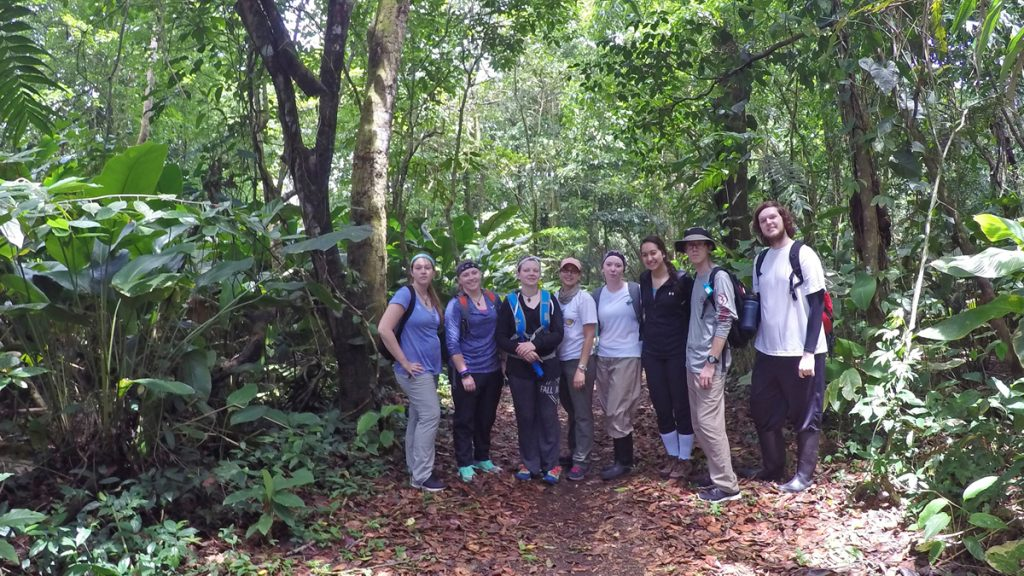 A hike in the jungle. Left to right: Natasha Karpel, Kayla Johnson, Stephanie Dildine, Ana Estrella, Hanna Burris, Margo Mendez, Dalton Swindle and Alec Moeller.